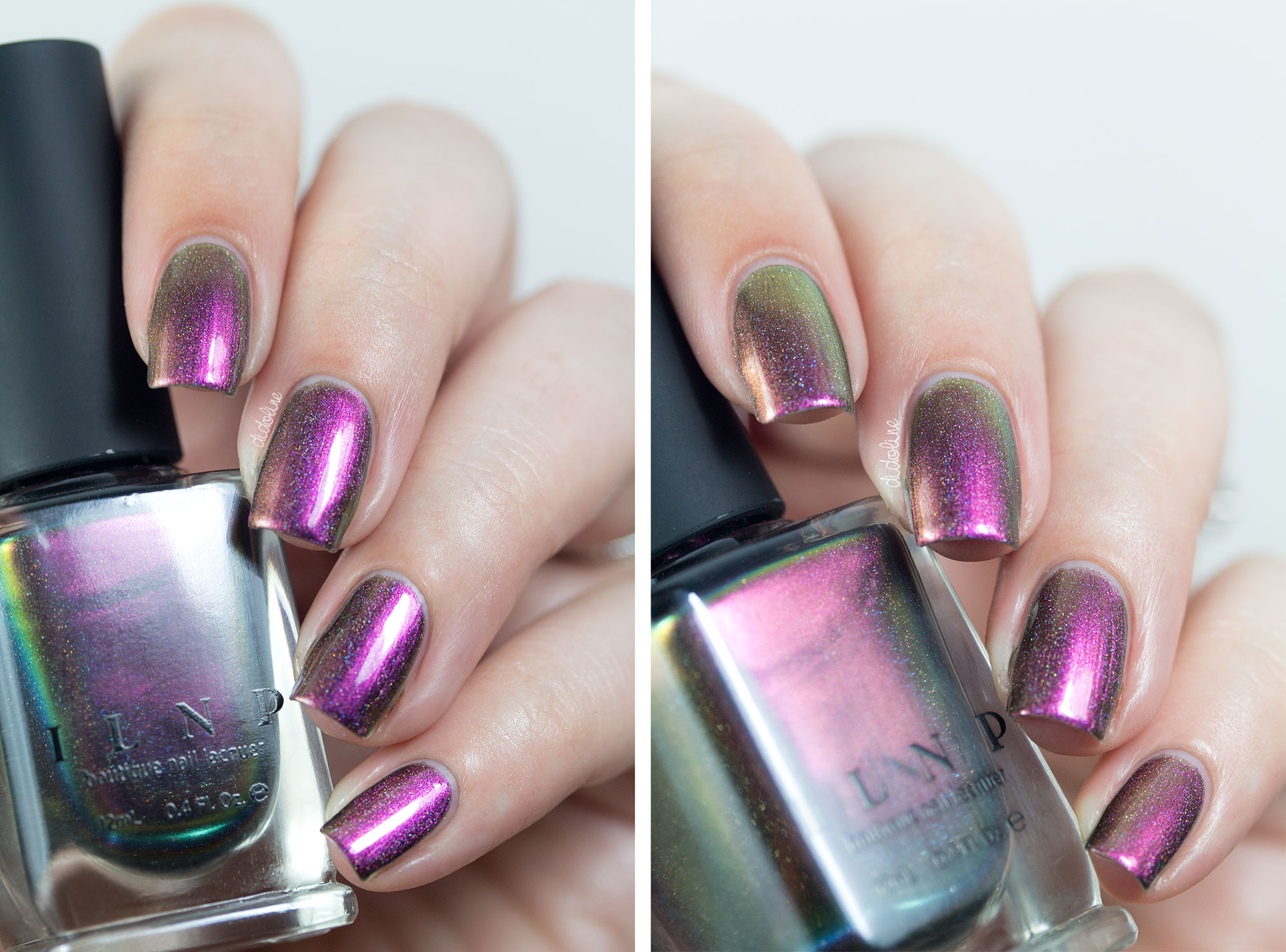 ILNP - Cameo (H)
